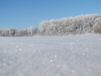 луг зимой_1