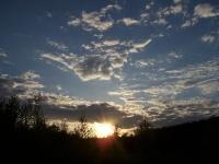 Царевский лес - вид на закат